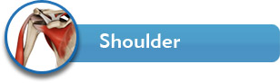 Shoulder - Dr. Allan Wang - Orthopaedic Surgeon - Shoulder, Elbow & Hand specialist